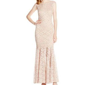NWT Sleeveless Glitter Stretch Lace Gown